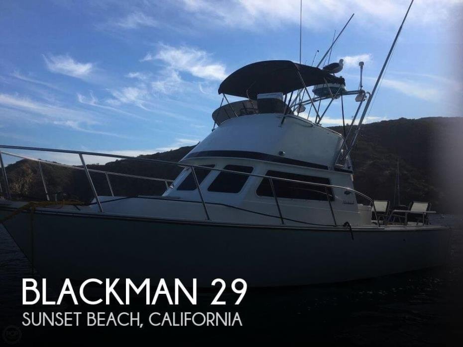 2005 Blackman 26' Sports Fisher