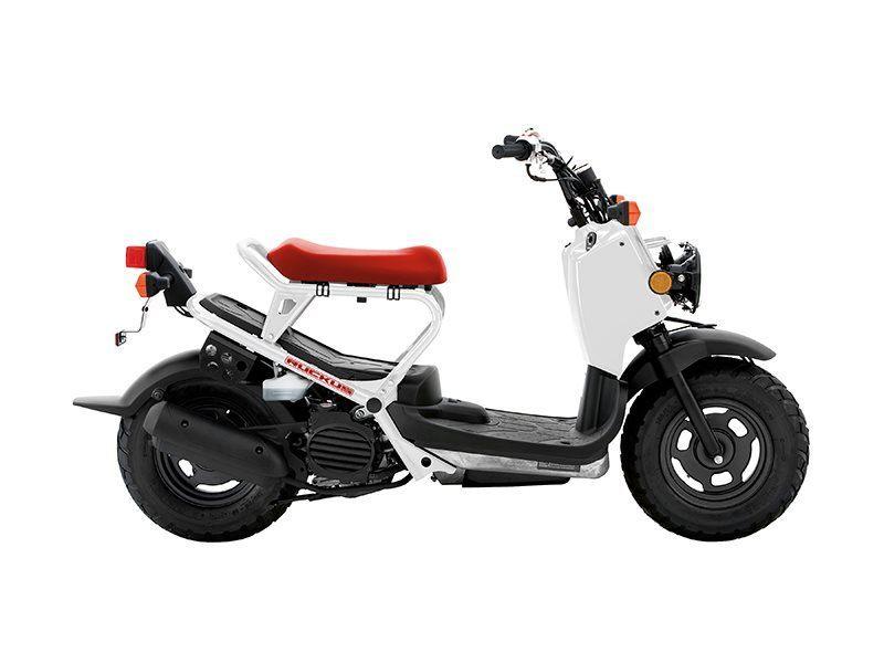 2016 Honda Ruckus