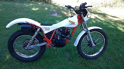 Honda : Other 1987 honda tlr 200 reflex street legal triials bike