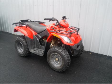 2010 Arctic Cat 150