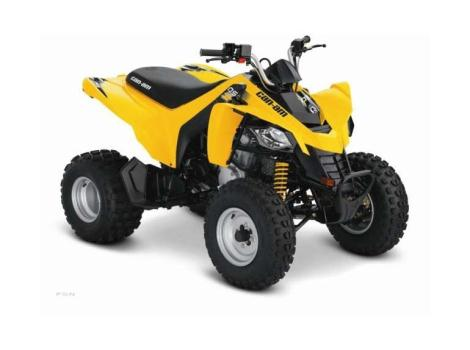 2013 Can-Am DS 250