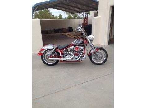 1998 Titan Motorcycle Co. Road Runner