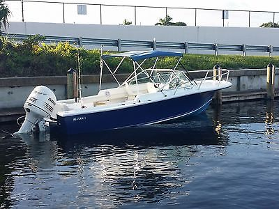 Used V20 Wellcraft 20' powered with 2004 Evinrude 200Hp fuel injection