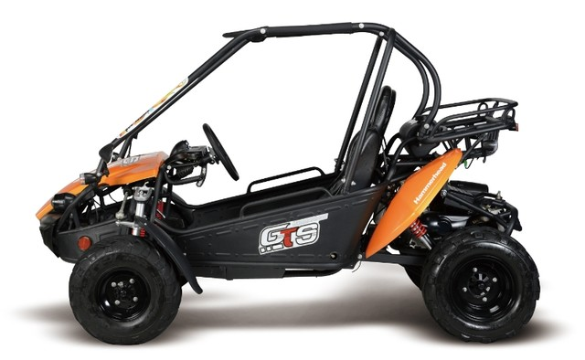 2015 Hammerhead GTS150