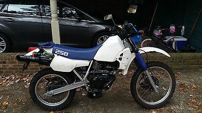 Kawasaki : KLR 1989 kawasaki klr 250