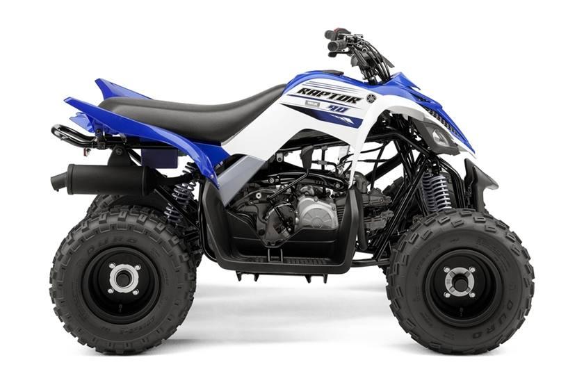 2002 Yamaha Raptor 80