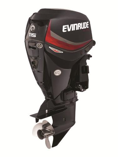 2015 EVINRUDE E115DGL Engine and Engine Accessories