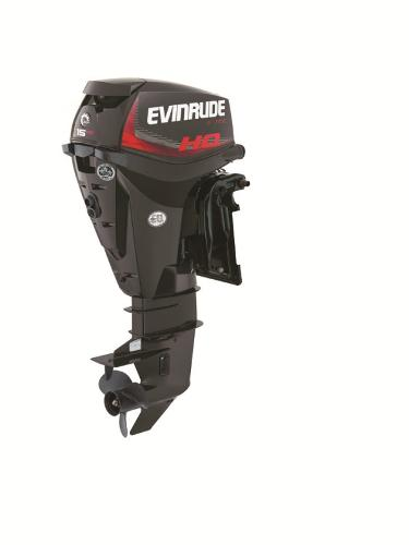 2015 EVINRUDE E15HPGL Engine and Engine Accessories