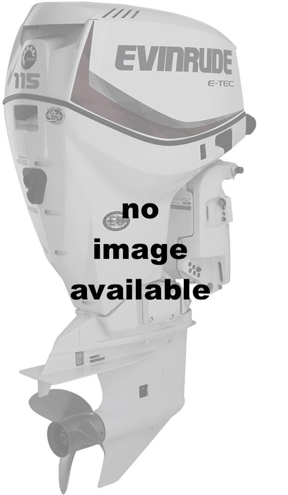 2016 Evinrude E115DGL Engine and Engine Accessories