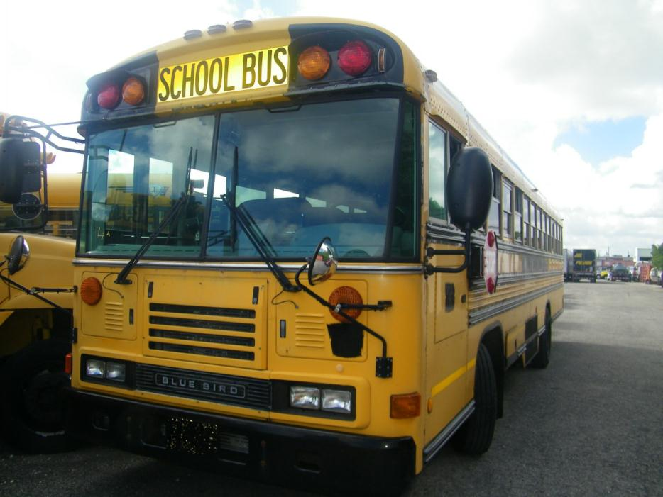 Blue Bird Bus Cars For Sale In Florida