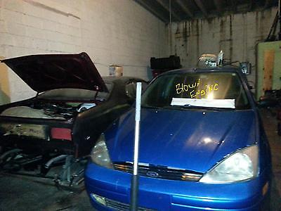Ford : Focus lx Ford Focus ZX3         Original Factory Blue Never Wrecked