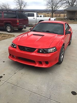 Ford : Mustang Saleen 2000 ford mustang saleen s 281