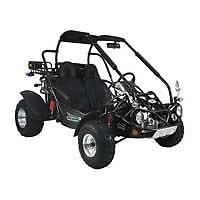 300 XRX Go Kart