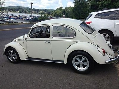 66 Vw Bug Cars for sale