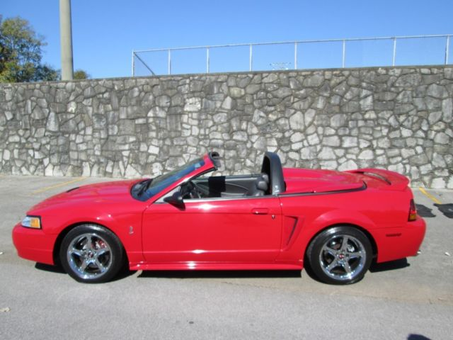 Ford : Mustang SVT COBRA 1999 ford mustang cobra convertible low mileage clean car fax like new gorgeous