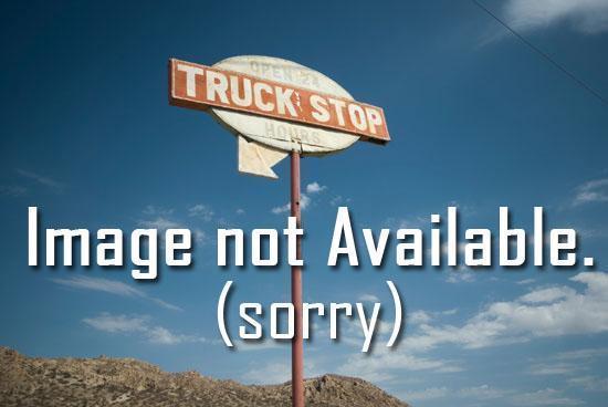 Bingham detachable trailer for sale in Blacksburg, VA.