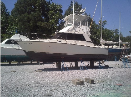 Charter fishing vehicles for sale for Fishing charters falmouth ma