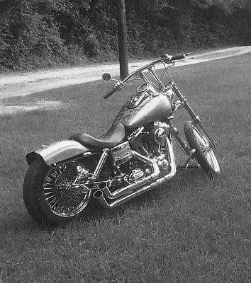 2007 Harley-Davidson Dyna  2007 Custom Harley Davidson Dyna Wide