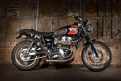 Triumph Bonneville T100 Motorcycles For Sale