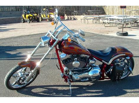 2006 Thunder Mountain Custom Blackhawk Softail
