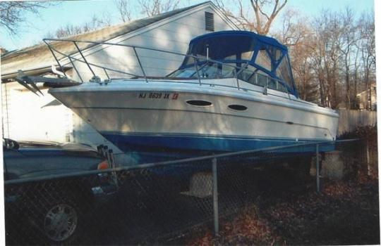 25' 1985 Sea Ray Cuddyfish