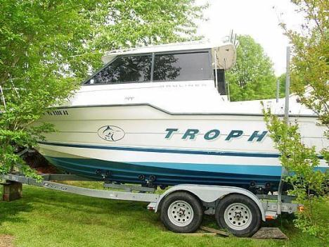 22' 1995 Bayliner 2359 Offshore Trophy