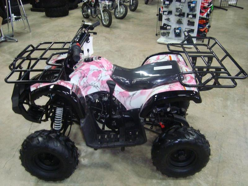 2015 Coolster Coolster Brand New 110cc Fully Automatic Mini Size ATV