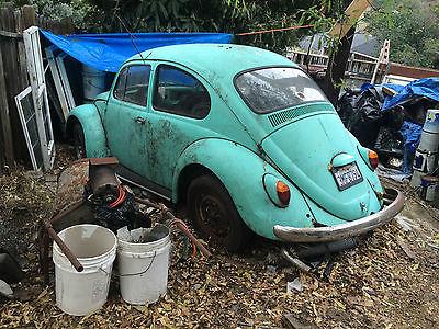 Volkswagen : Beetle - Classic bug 1966 volkswagen bug cali style cool california bug
