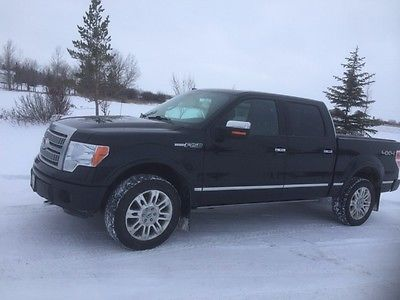 Ford : F-150 Platinum 2011 ford f 150 platinum truck