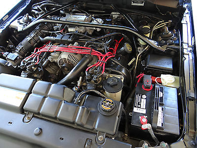 Ford : Mustang Saleen S281 ADULT OWNED AND CARED FOR ALL STOCK BLACK INT/ BLACK EXT SALEEN S281 #118, 2