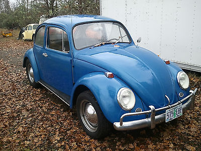 1966 Vw Bug Cars For Sale