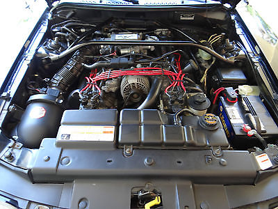 Ford : Mustang Saleen S281 ADULT OWNED AND CARED FOR ALL STOCK BLACK INT/ BLACK EXT SALEEN S281 #118, 1