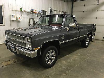 Chevrolet : C/K Pickup 1500 Silverado 1981 chevy pickup