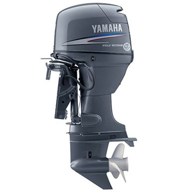 2015 YAMAHA F50LB Engine and Engine Accessories