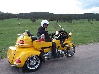 Honda : Gold Wing 2005 honda goldwing trike
