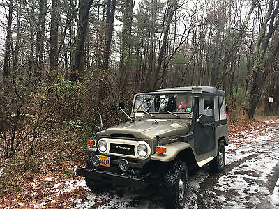 1975 Toyota Land Cruiser Base Sport Utility 2-Door 1975 Toyota Land Cruiser Base Sport Utility 2-Door 4.2L