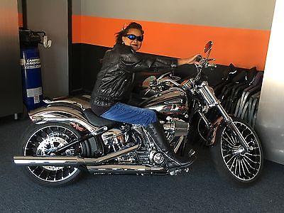 2014 Harley-Davidson Other  2104 CVO Breakout