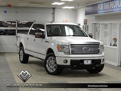 2010 Ford F-150  10 ford f150 platinum supercrew crew v8 auto sony navi gps roof heated cooled