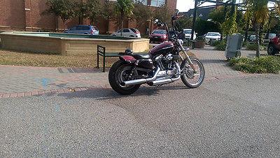 2006 Harley-Davidson Sportster  Harley Davidson Sportster 1200 Cystom