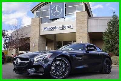 2017 Mercedes-Benz Other 2017 Mercedes-Benz AMG GT 2017 AMG GT New Turbo 4L V8 32V Automatic RWD Coupe Premium