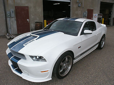 2011 Shelby Mustang Deluxe #5 Impossible to find Friends and Family single digit VIN-2700 Collector Miles!