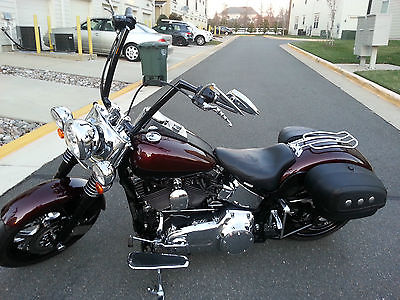 2007 Harley-Davidson Softail Customized 2007 HD Softail Custom Deluxe