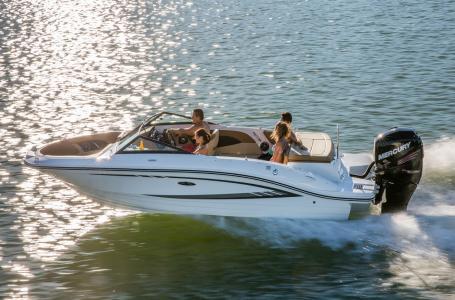 2016 Sea Ray 21 SPX Outboard