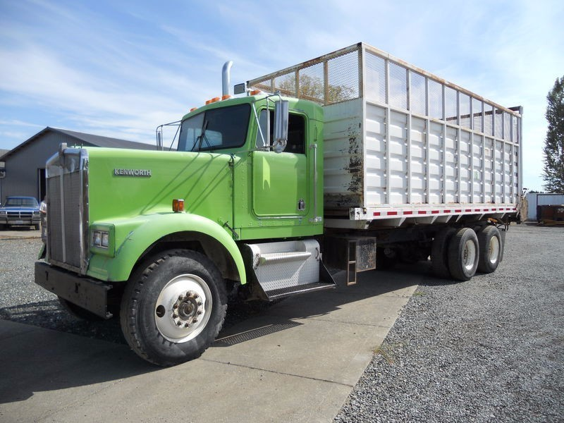 1983 Kenworth W900 Conventional - Day Cab