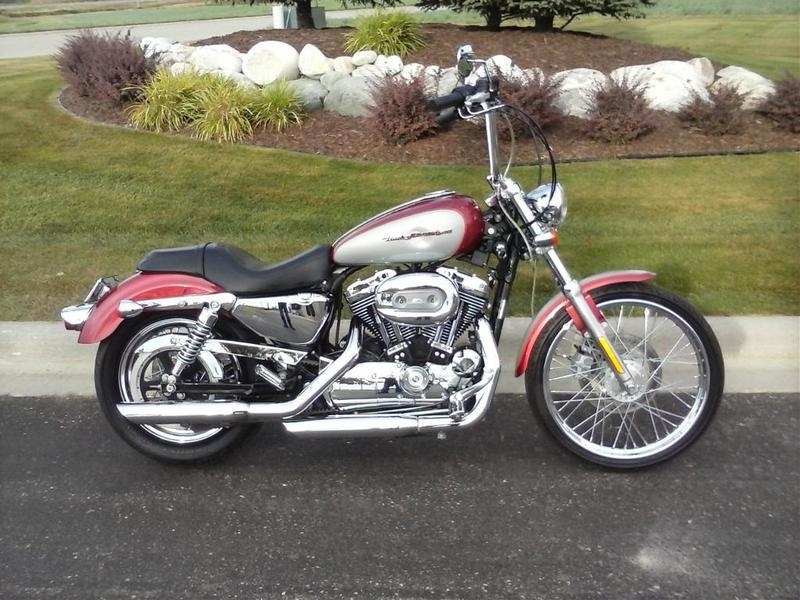 harley davidson xl1200c sportster 1200 custom motorcycles for sale in minnesota. Black Bedroom Furniture Sets. Home Design Ideas