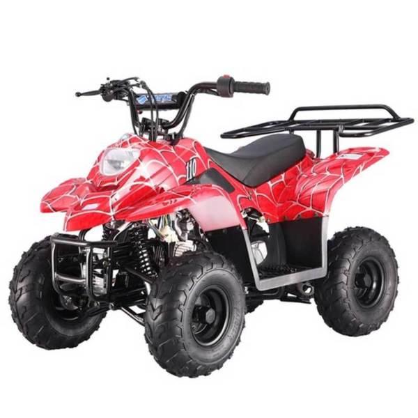 TaoTao fullsize ATV