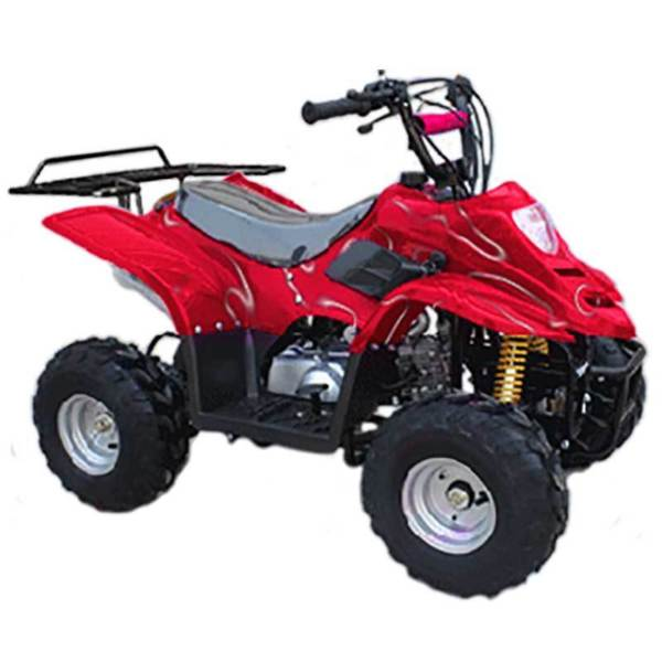 Mini 4 Wheeler
