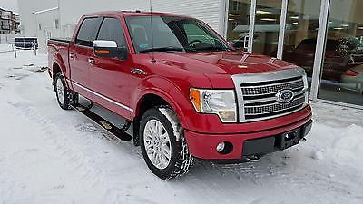 Ford F  F  Platinum F   Usd