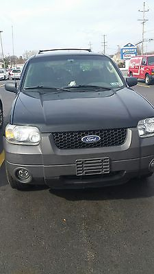 2006 Ford Escape XLT Sport Utility 4-Door 2006 ford escape xlt sport utility 4 door 3.0 l