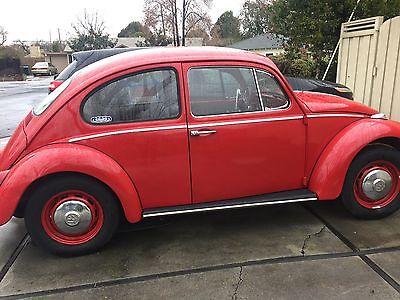 1966 Volkswagen Beetle - Classic VW Beetle 1966